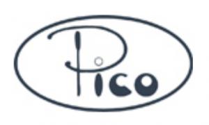 Pico Stamp